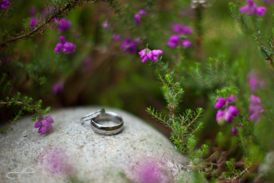 13-06-11_weddingportfolio_lindsaydonovanphotography-5