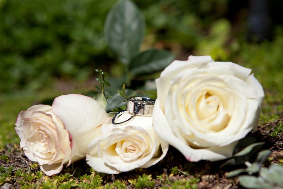 13-06-12_weddingportfolio_lindsaydonovanphotography-20